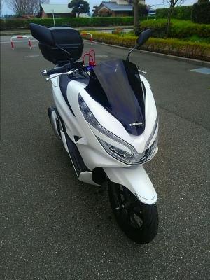 Kimg2900